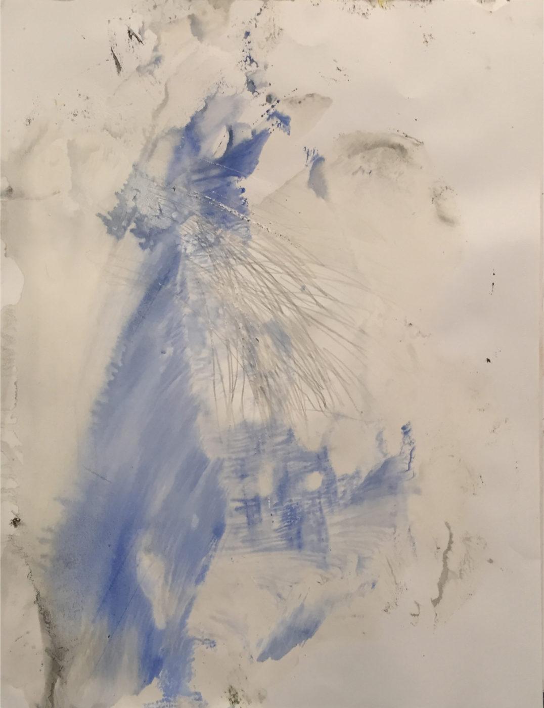 MARC FELD 2016 BIRD  Gouache mine de plomb et eau de javel sur papier 50 x 65 cm