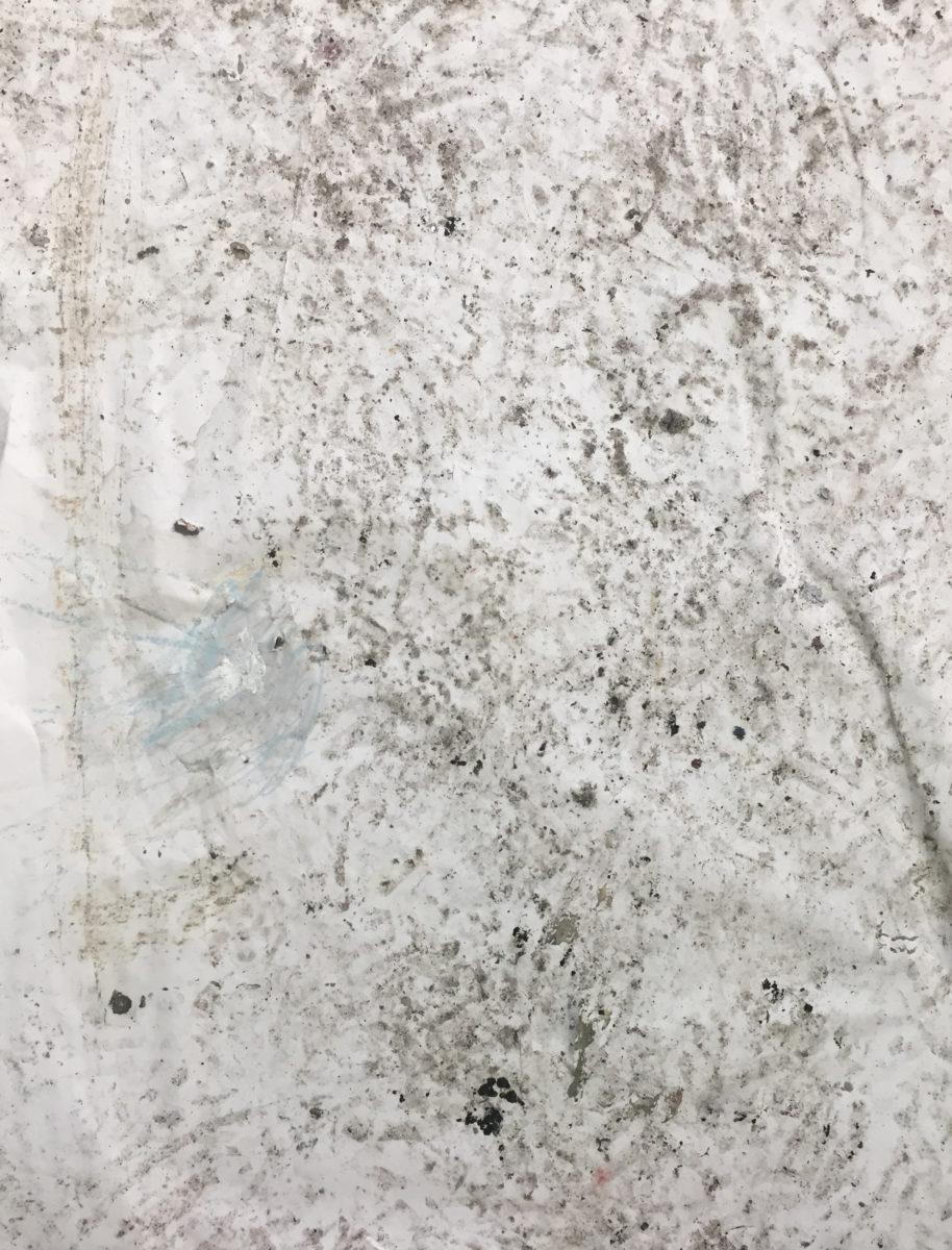 MARC FELD 2016 POUSSIÈRE 2  Huile, pigment et gouache sur papier 50 x 65 cm