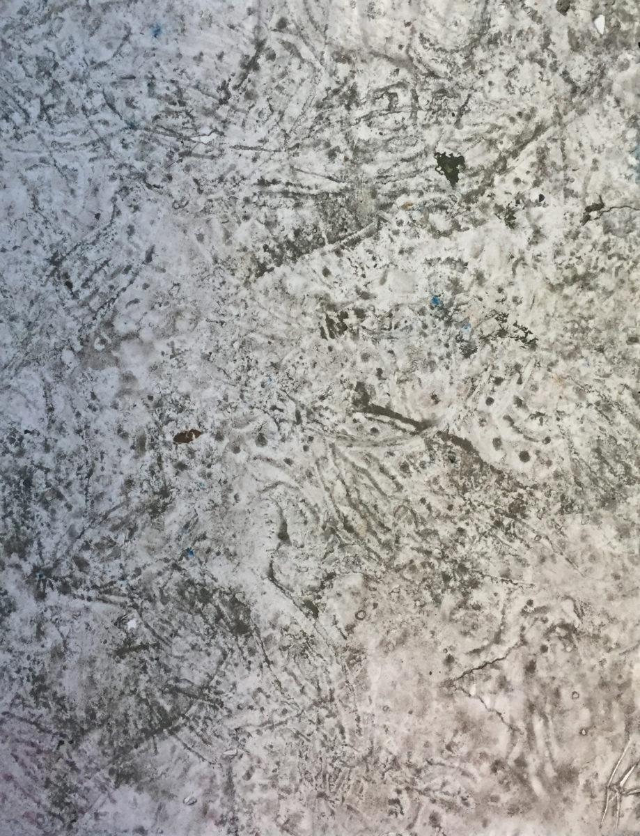 MARC FELD 2016 POUSSIÈRES 1  Huile et gouache sur papier 50 x 65 cm