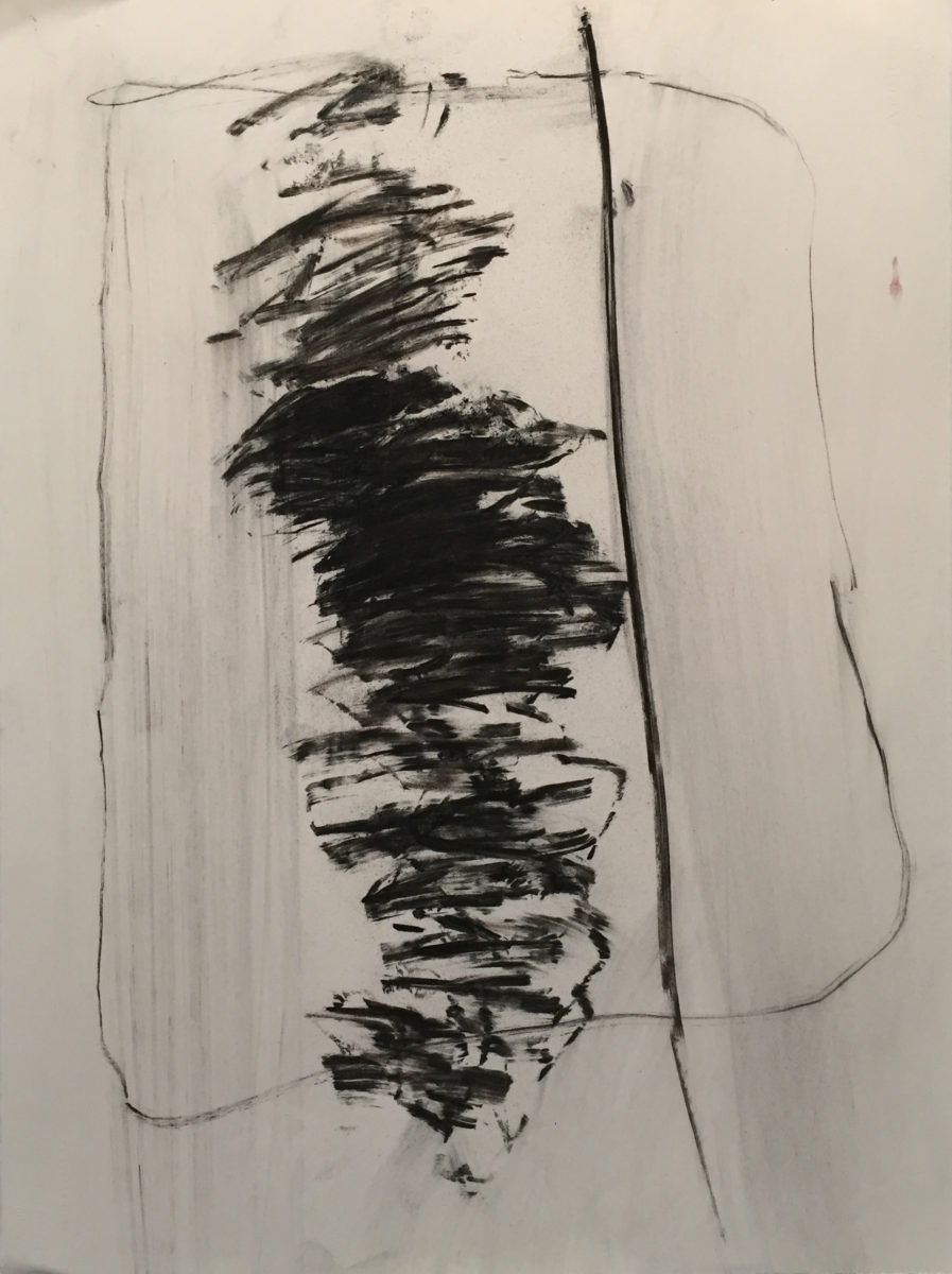 MARC FELD 2017 FAROUCHE Fusain sur papier 56 x 76,5 cm