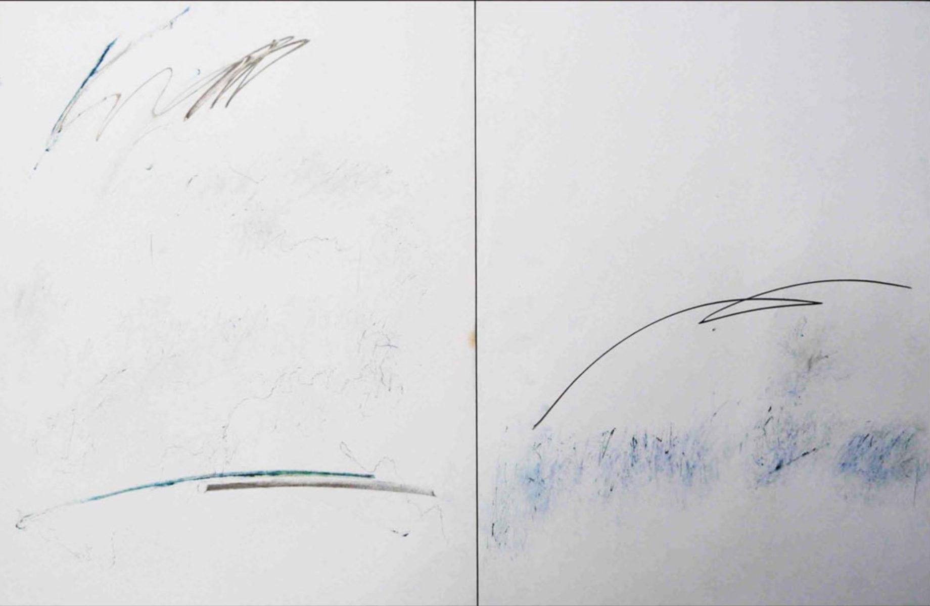 MARC FELD 2014 AU LOIN  Mine de plomb pigment et feutre sur papier 100 x 65 cm