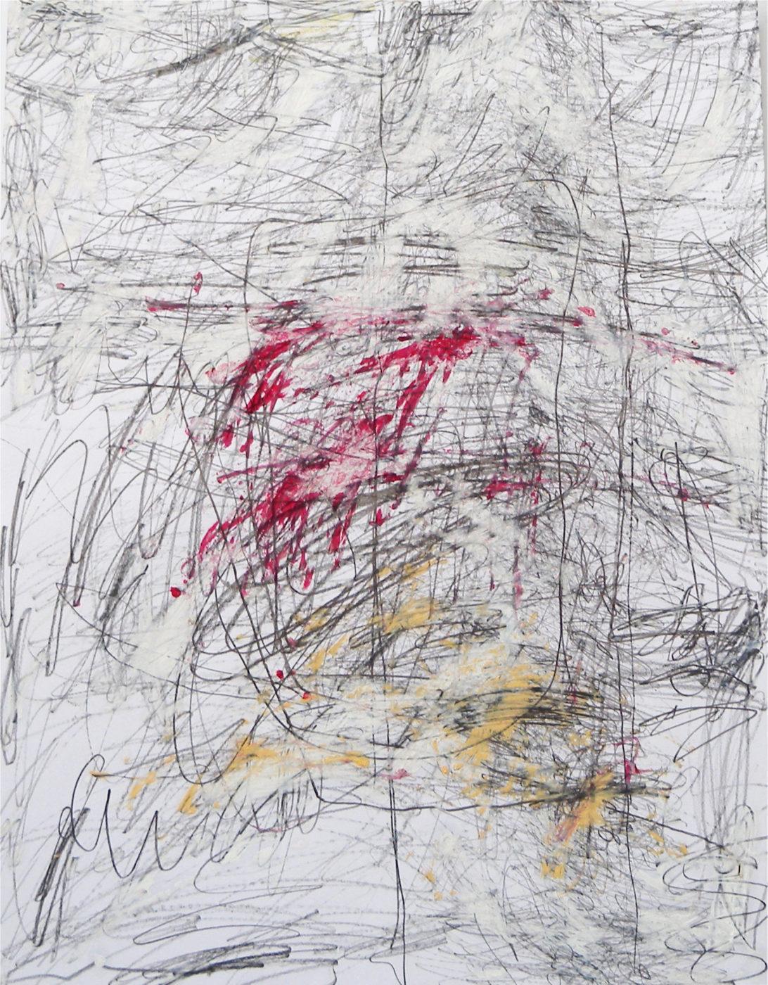 MARC FELD 2014 DONEDA Mine de plomb et huile sur papier 50 X 65 cm