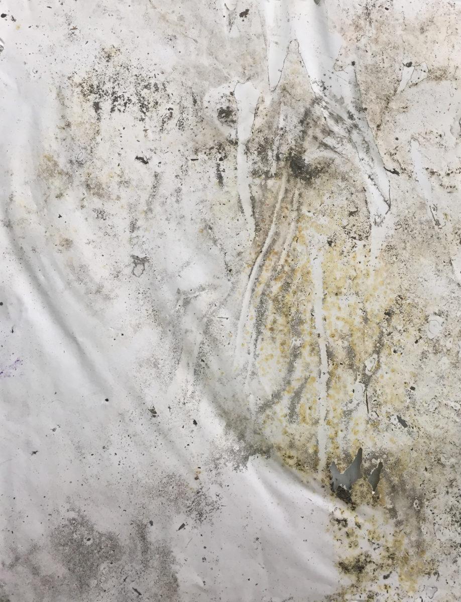 MARC FELD 2016 FABLE  Huile, pigment et gouache sur papier 50 x 65 cm