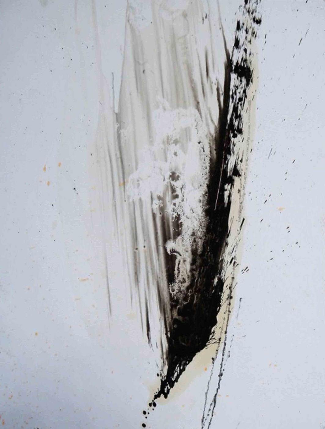 MARC FELD 2009 FAILLE  Huile et mine de plomb sur papier 50 x 65 cm