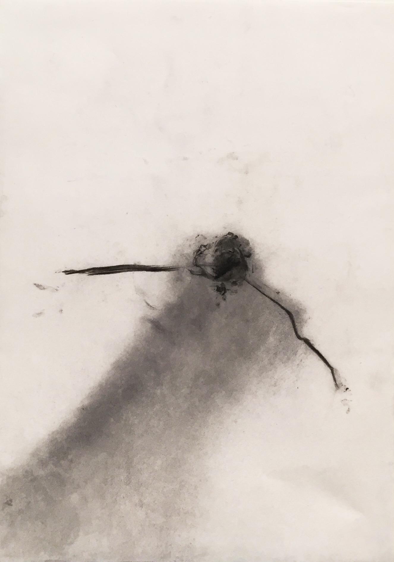 MARC FELD 2003 SISYPHE Fusain sur papier 21 x 29.7 cm